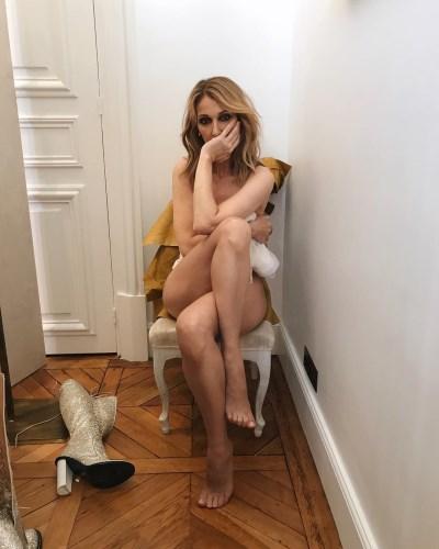 Celine Dion se animo a posar desnuda